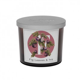 Candela profumata Fig Leaves & Ivy | Elementi | Pernici